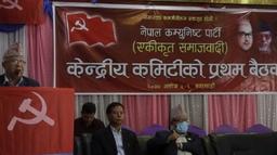एकीकृत समाजवादीको केन्द्रीय कमिटी तीन सय ३५ सदस्यीय, यस्तो छ कार्य विभाजन